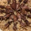 実山椒かおる、ホタルイカの土鍋ご飯