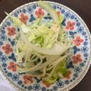 めちゃうま!野菜モリモリタイ風サラダ
