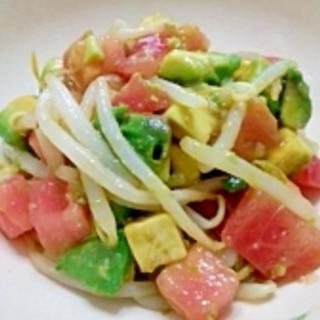 アボカドとトマトともやしの味噌サラダ