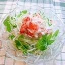 あともう一品に☆大根と水菜の簡単サラダ