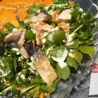 マヨネーズドレッシングで★クレソンと焼き鯖のサラダ