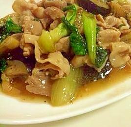チンゲン菜となすと豚肉の中華炒め