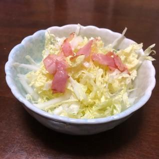 白菜簡単サラダ
