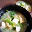 春菊と人参の葉の味噌汁