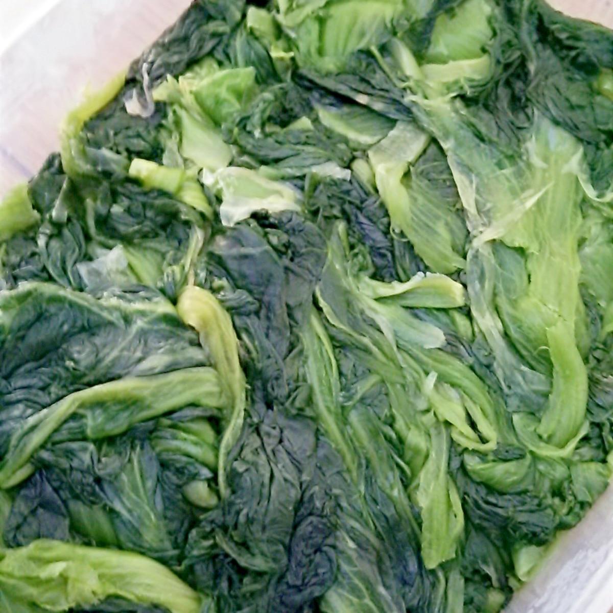 塩漬け 高菜