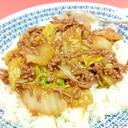 簡単♪(^^)合挽肉と白菜のあんかけ丼♪