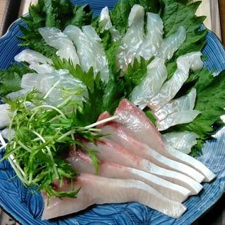 ひらめとカンパチの刺身☆サラダ仕立て