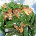 味付け不要・すぐ出来る、サバ缶と葉タマネギの煮物