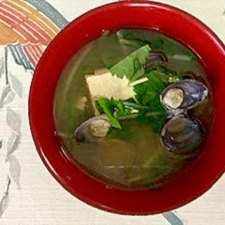 水菜、木綿豆腐、しじみ、みつばのお味噌汁