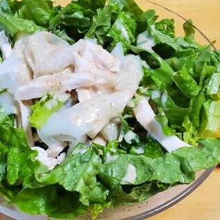 大根と鶏胸肉とレタスのサラダ