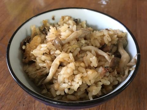 鯖缶の炊き込みご飯!簡単で美味しい♪