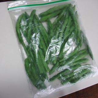 旬のインゲン豆 生のまま冷凍保存