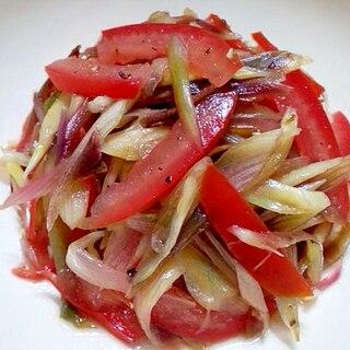 茗荷とトマトのバルサミコサラダ
