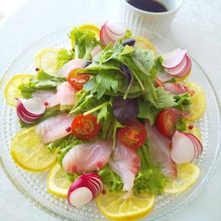 野菜たっぷり♪鯛のカルパッチョ♪サラダ