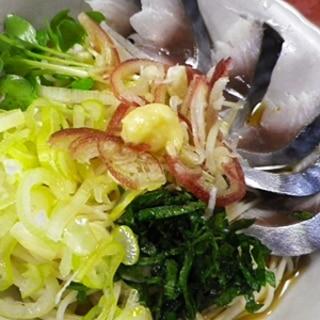 しめ鯖薬味素麺