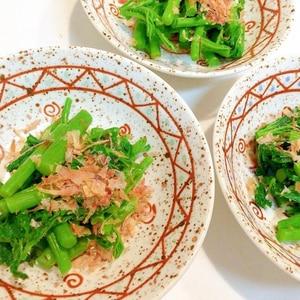 絶品山菜☆アイコ(ミヤマイラクサ)のおひたし