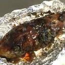 キャンプ飯★おろしポン酢で高菜の焼きナス