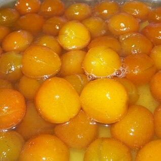 圧力鍋で簡単★金柑の甘露煮