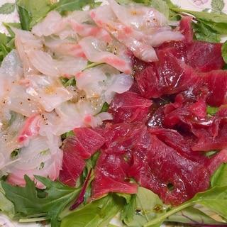マグロと鯛のカルパッチョ