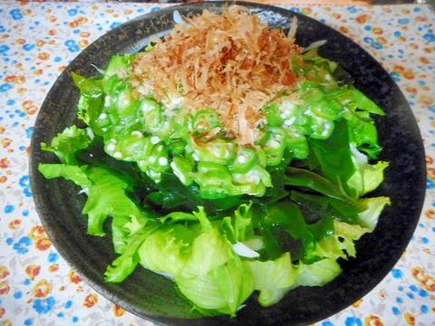 わかめ サラダ レタス