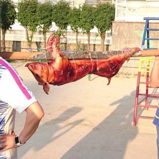 豚の丸焼き(17~19㎏程度、50人前、9時間)