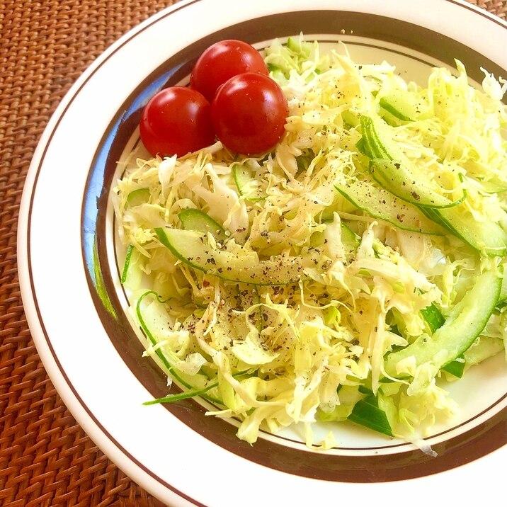藻塩で食べる♪キャベツときゅうりのサラダ