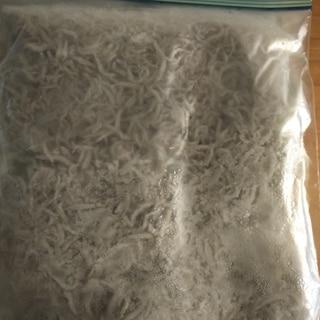 釜揚げしらす 冷凍保存!