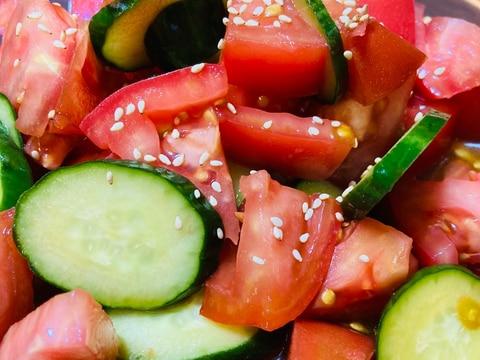 簡単☆トマトと胡瓜のさっぱりサラダ