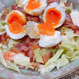 【手作り】フレンチドレッシングと半熟卵のサラダ
