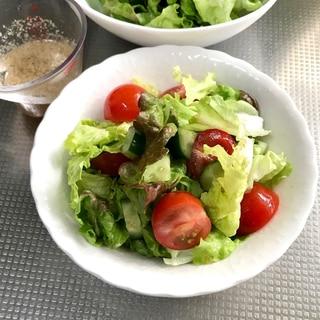 サニーレタスとトマトときゅうりの野菜サラダ