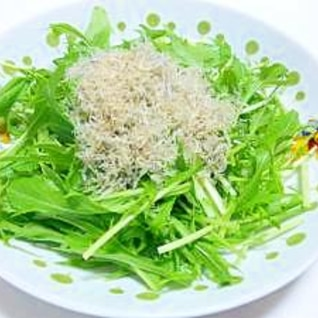 水菜とカリカリしらすサラダ