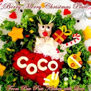 ベリーメリークリスマスディナー☆犬ごはん