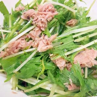 簡単(^^)水菜とツナ缶のネギ塩レモン和え♪