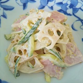 簡単!蓮根とハム胡瓜のマヨ醤油サラダ