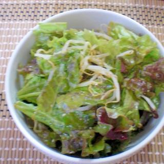 サニーレタスともやしの韓国風サラダ
