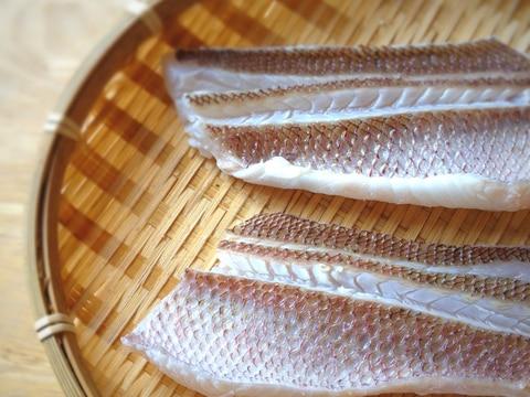 皮付きが一番おいしい★鯛の湯引きで昆布〆。