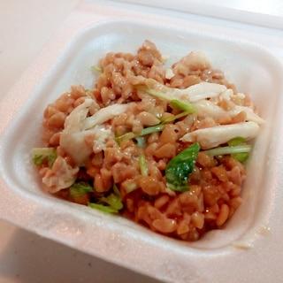 生姜香る サラダチキンと豆苗のひきわり納豆
