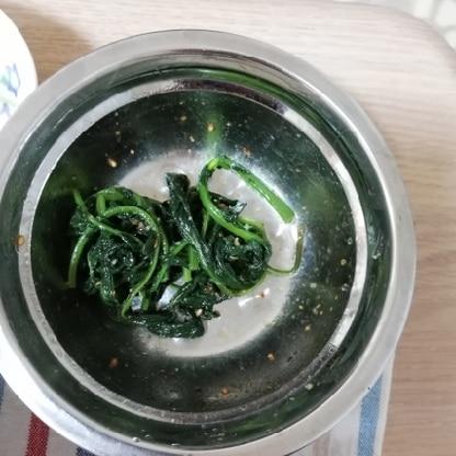 ラディッシュの葉っぱで作ってみましたが、おいしかったです!色んな野菜に挑戦したいと思います。