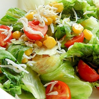塩なし5分!?しらす&レタスの炒め物(ミニトマト)