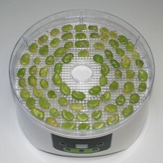 濃厚豆味☆食品乾燥機でおつまみ乾燥そら豆