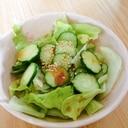 レタスきゅうりサラダ