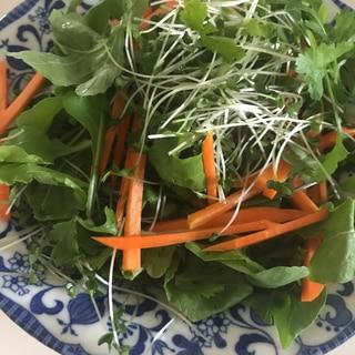 4種の野菜サラダ
