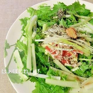 ごま油かおる♪水菜と豆腐のサラダ✿