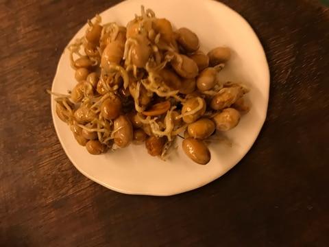 節分豆!一番美味しい食べ方!止まらないパリパリ豆