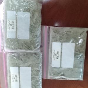 保存用 実山椒の塩漬け