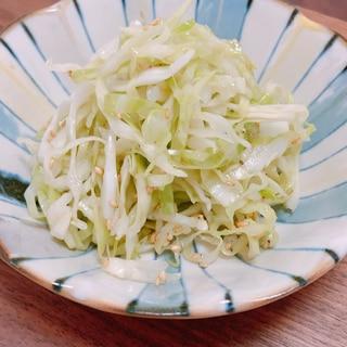 ヘルシーな無限キャベツ☆