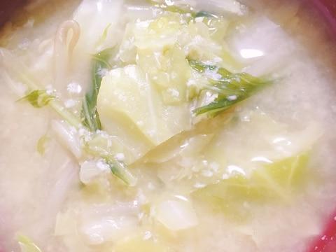 酒粕入り★キャベツ水菜もやしの味噌汁