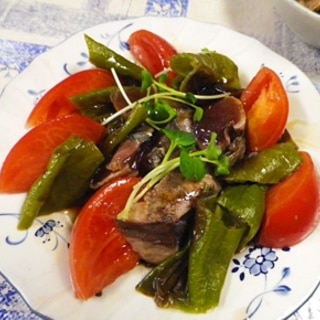 カツオしし唐トマトの簡単サラダ