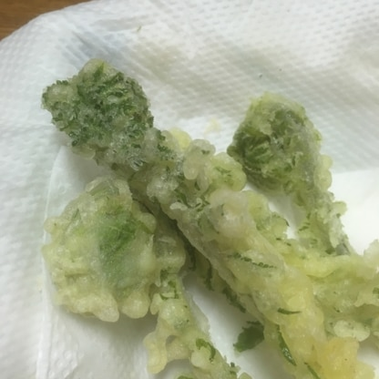 サクサクで、こごみの天ぷらを美味しかったです。