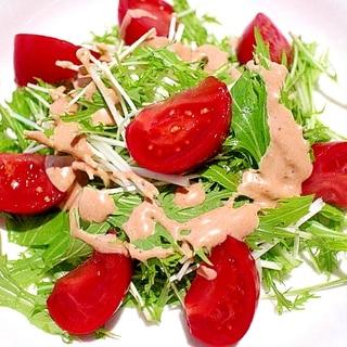 【超簡単】大人オーロラミルクソースの水菜サラダ